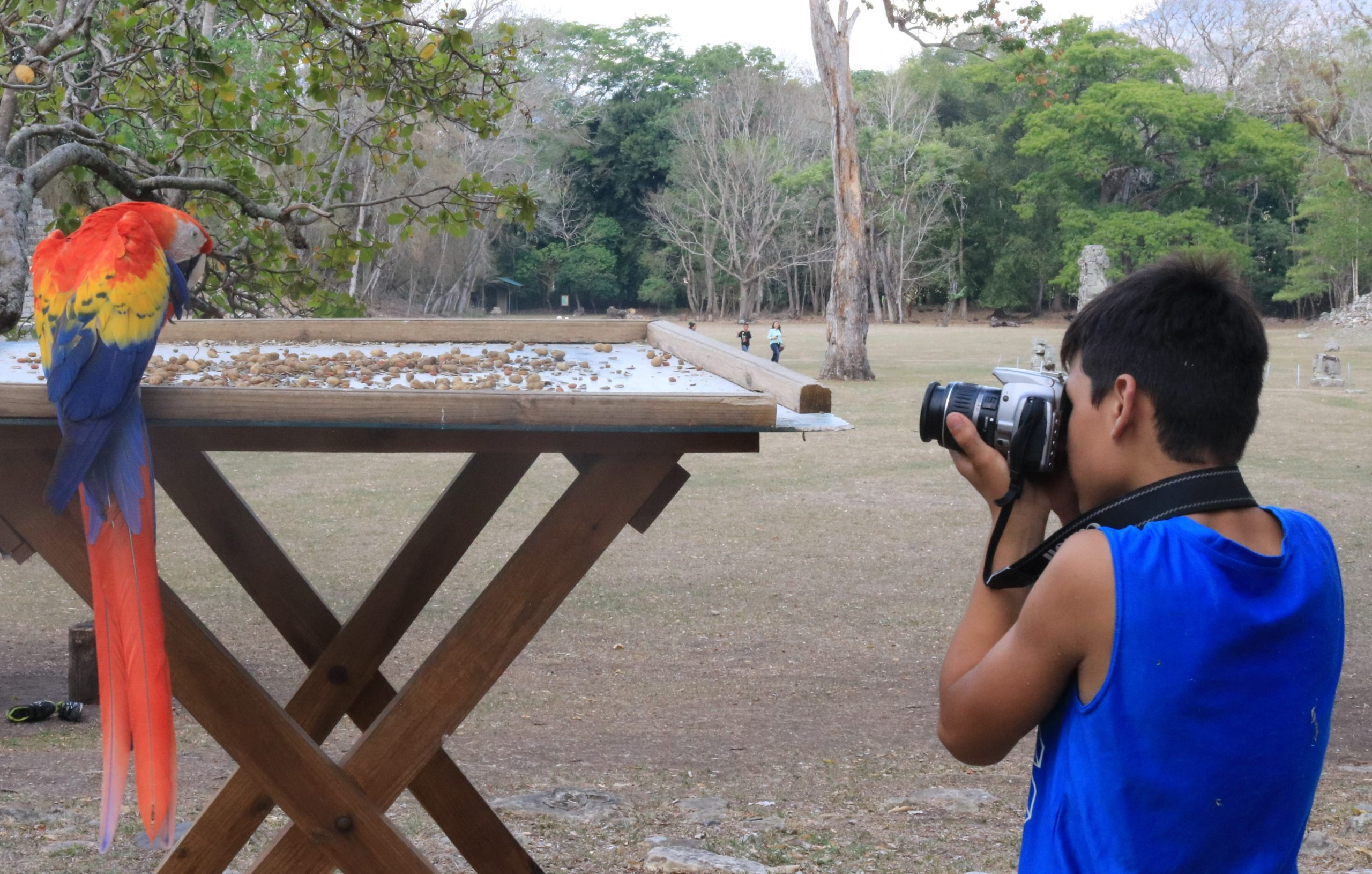 5 Things You Didn't Know about Casita Copán